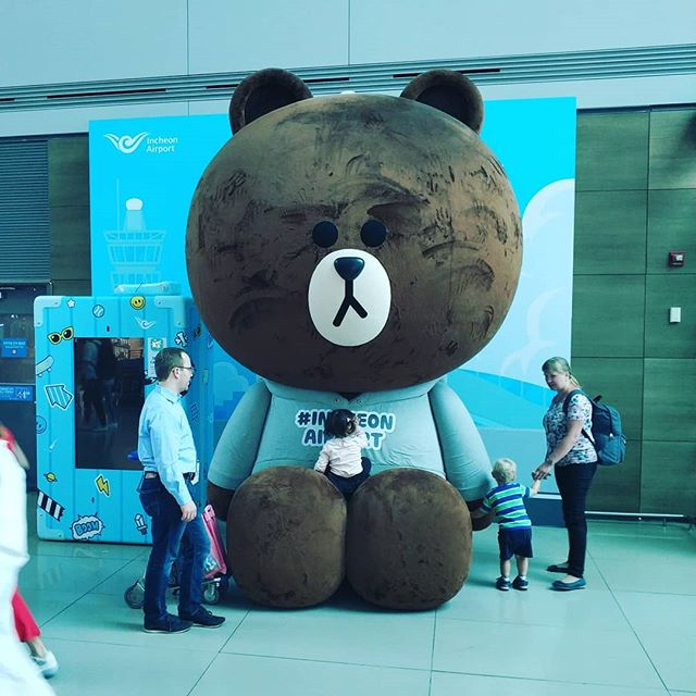 Sad bear - ICN - SVO - LED